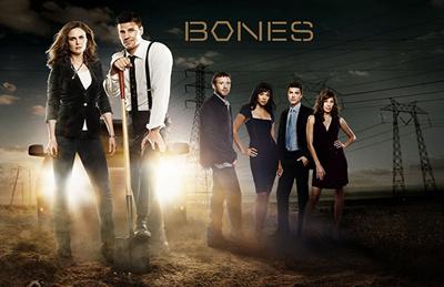 Bones Seasons 1-12 DVD Box Set