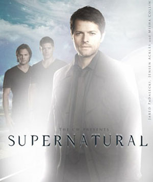 Supernatural Season 10 dvd poster