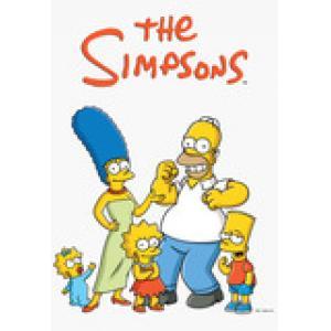 the simpsons dvd box set 1-24