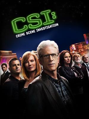 CSI Lasvegas Season 15 dvd poster